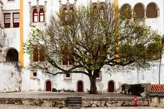Sintra den nationella slotten (Palacio Nacional de Sintra) Arkivfoto