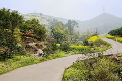 Sinuous countryroad in flowering mountain on sunny spring day Royalty Free Stock Photo