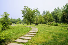 Sinuous flagstone path on grassy lawn in sunny summer Stock Photo
