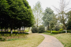 Sinuous footpath in verdant spring Stock Photography