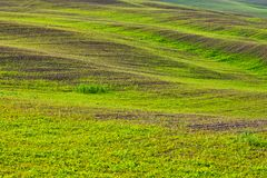 Sinuous hills in tuscany countryside Italy. Sinuous hills in tuscany countryside in Italy royalty free stock photography