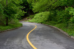 Sinuous road Stock Photography