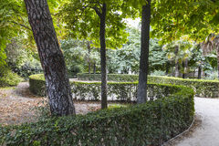 Sinuous walkway in the  leafy park Stock Images