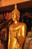Sinus för Buddhakroppställning Royaltyfri Bild