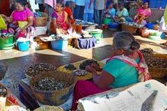 SIOLIM, GOA, INDIEN - CIRCA IM DEZEMBER 2013: Verkäufe einer ältere Frau Lizenzfreie Stockfotos