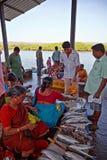 SIOLIM, GOA, INDIEN - CIRCA IM DEZEMBER 2013: Verkauf von Fischen und von seafo Stockfotos