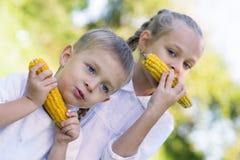 Siostry i brata łasowania kukurudza Zdjęcia Stock