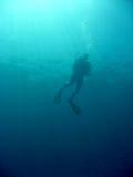 Sipadan scuba diver Stock Images