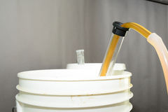Siphoning beer from primary fermentation bucket Royalty Free Stock Photos