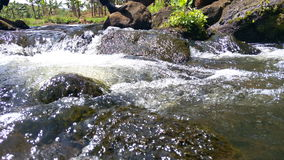 Sipi River. Flowing with great calmness Royalty Free Stock Photos