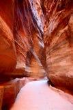 Siq,对Petra的入口 免版税库存图片