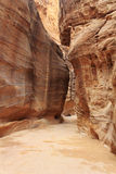 The Siq - ancient canyon in Petra, Jordan Stock Photography