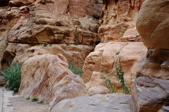 In Siq Canyon at Petra Stock Photo