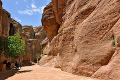 Siq canyon in Petra Royalty Free Stock Photos