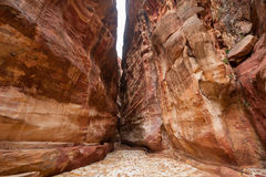 The Siq - narrow gorge to ancient city Petra, Jordan Royalty Free Stock Photography