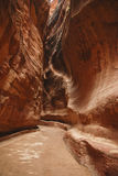 The Siq in Petra Stock Photo