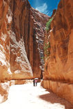 The Siq Petra. The Siq, the narrow slot-canyon that serves as the entrance passage to the hidden city of Petra, Jordan, seen here with tourists walking.This is Stock Image
