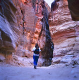 The Siq, Petra, Jordan. The Siq, the narrow slot-canyon that serves as the entrance passage to the hidden city of Petra, Jordan, seen here with tourist walking Stock Photography