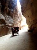 The Siq in Petra, Jordan Royalty Free Stock Photos