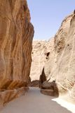 Siq of Petra Stock Photos