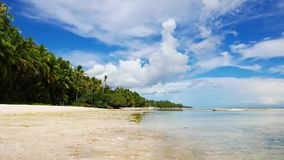 Siquijor White Sand Beach. A low tide clip from the powdery white sand beaches of San Juan, Siquijor Island; showing the palm trees surrounding the beach stock video footage