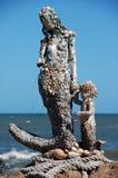 Sirène Photos libres de droits