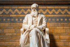 Statue of Sir Charles Darwin at The Natural History Museum in London. Sir Charles Darwin English naturalist, geologist and biologist his statue situated at the royalty free stock photography