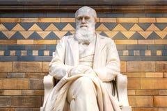 Sir Charles Darwin statua przy historii naturalnej muzeum w Londyn, UK zdjęcia stock