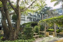 Sir Robert Ho Tung Library. Macau, DEC 31: Sir Robert Ho Tung Library on DEC 31, 2016 at Macau, China Royalty Free Stock Photo