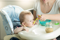 Sira de mãe a alimentar-lhe 9 meses de filho idoso do bebê que senta-se na cadeira da criança Fotos de Stock Royalty Free