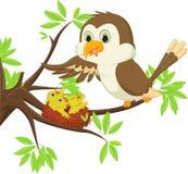 Sira de mãe ao pássaro que alimenta um sem-fim a seu filho no ninho Imagem de Stock Royalty Free