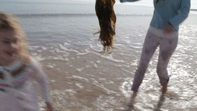 Sira de mãe a perseguir sua filha na praia com alga vídeos de arquivo