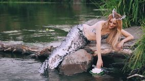 A siren with blond long straight hair, a mermaid pearl crown on her head and a luxurious silver tail is sitting on a log. Playing with a lotus floating on the stock video