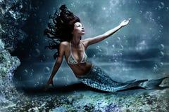 Sirena Foto de archivo libre de regalías