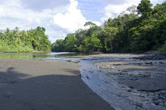 Sirena River and Estuary in Corcovado Rainforest Royalty Free Stock Photography