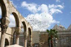 Siria Fotografía de archivo libre de regalías