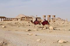 Siria, Palmyra; 25 de febrero de 2011 - ruinas de la ciudad semítica antigua del Palmyra poco antes la guerra, 2011 Foto de archivo libre de regalías
