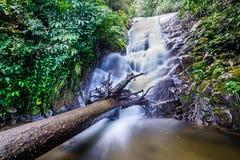 Siribhume瀑布, Inthanon国家公园,清迈,泰国 免版税库存照片