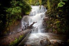 Siribhume vattenfall i kunglig personträdgården Siribhume Fotografering för Bildbyråer