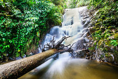 Siribhume Waterfall ,Inthanon Nation Park, Chiang Mai, Thailand. Beautiful waterfall Royalty Free Stock Images