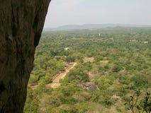 Sirigaya von Sri Lanka Stockfoto