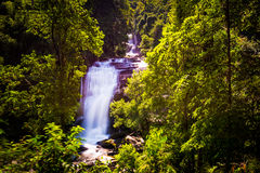 Sirithan vattenfall i chiangmaien Thailand royaltyfri fotografi