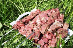 Sirloin meat, strung on skewers. Prepared for shish kebab meat. Process of cooking meat for picnic Stock Photography