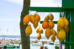 Sirmione en el lago Lago di Garda, Italia fotos de archivo libres de regalías