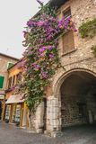 SIRMIONE, ITALY Facade of house in center of Sirmione with flowering pink bougainvillea.traditional summer facade decoration of a Royalty Free Stock Images