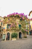 SIRMIONE, ITALY Facade of house in center of Sirmione with flowering pink bougainvillea.traditional summer facade decoration of a. N old house in Italy, italy royalty free stock photography