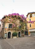SIRMIONE, ITALY Facade of house in center of Sirmione with flowering pink bougainvillea.traditional summer facade decoration of a. N old house in Italy, italy royalty free stock image
