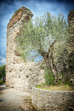 Sirmione's roman ruins Royalty Free Stock Photo