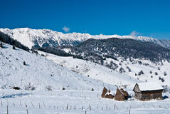 Sirnea, Romania Royalty Free Stock Image