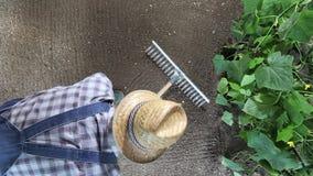 Sirva al granjero que trabaja con el rastrillo en el huerto, rastrillando el suelo cerca de una planta del pepino, la visión supe almacen de video
